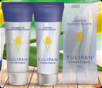Kit Completo Tulipan